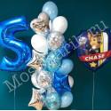 Шары на 5 лет ко дню рождения: Щенячий патруль