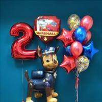 Воздушные шарики для детей